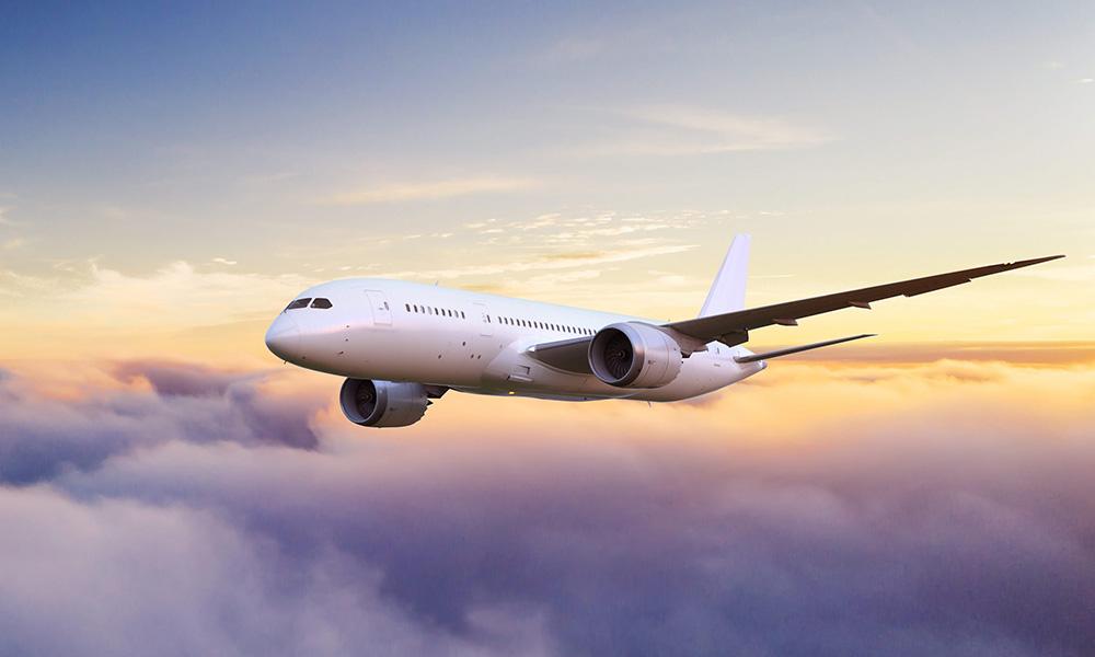 """وقود مصدره نبتة الـ """"كاريناتا"""" يخفض البصمة الكربونية للطيران وأثره على البيئة"""
