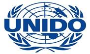 منظمة الأمم المتحدة للتنمية الصناعية - يونيدو