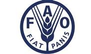 منظمة الأغذية والزراعة - فاو