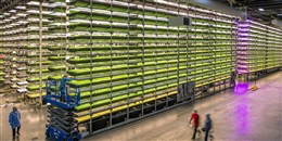 """""""مكتب أبوظبي للاستثمار"""" يخصص 30 مليون دولار لشركات التقنيات الزراعية"""