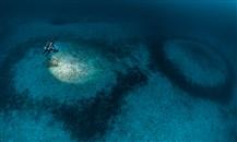 """BLANCPAIN تكشف عبر غومبيسا VI لغز """"حلقات المرجان"""" في المتوسط"""