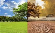 """مجموعة """"أم يو إف جي"""": مؤتمر COP26 فرصة لخفض الاحتباس الحراري"""