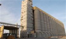 """""""مؤسسة الحبوب"""" السعودية ترسي الدفعة الثانية من القمح المستورد"""