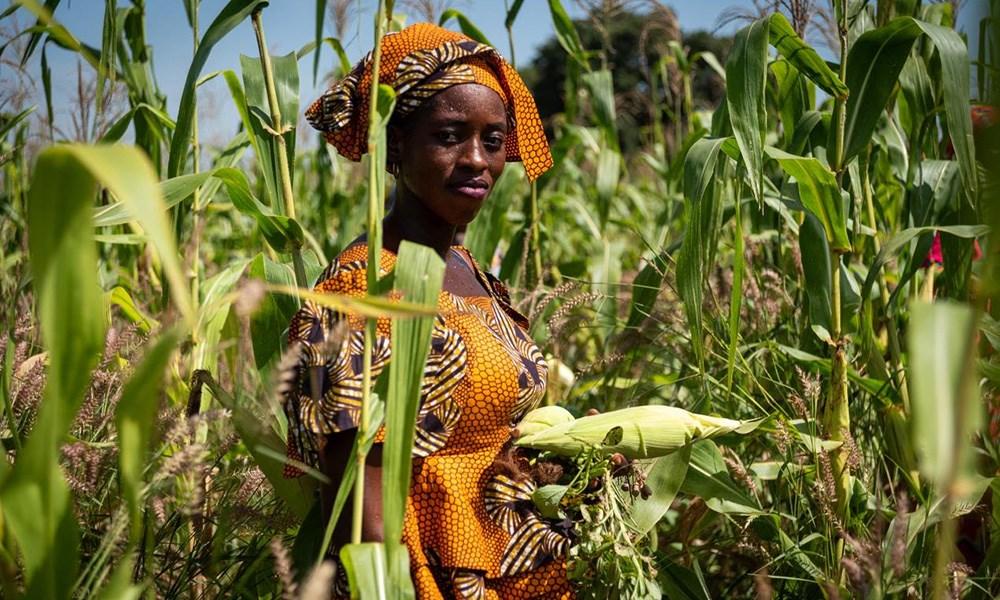 خسارة التنوع البيولوجي يهدّد استدامة الغذاء