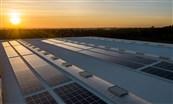 دبي تؤكد تبنيها إستراتيجية واضحة للتحول نحو الاقتصاد الأخضر