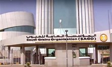 """السعودية: """"مؤسسة الحبوب"""" تطرح مناقصة ثانية لاستيراد 295 ألف طن من القمح"""