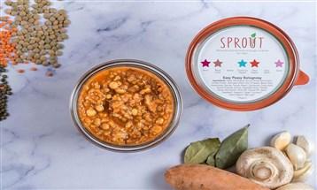 Sprout FCZO تغلق جولة تمويلية لتطوير تطبيقات جديدة